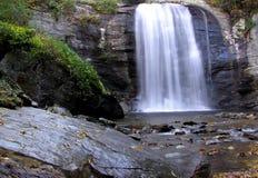 Automnes en verre de regard, forêt nationale de Pisgah, la Caroline du Nord occidentale Image libre de droits