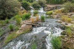 Automnes et rivière de Tumwater Photographie stock