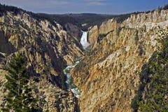 Automnes inférieurs de fleuve de Yellowstone Photographie stock