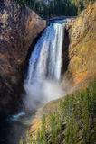 Automnes inférieurs de Yellowstone, Yellowstone NP Images libres de droits