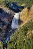 Automnes inférieurs de Yellowstone, Yellowstone NP Photos stock