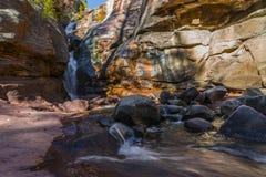 Automnes le Colorado de crique de foins Photo libre de droits