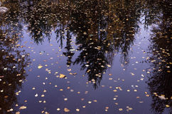 automnes sur un lac Photos libres de droits