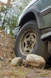 Automobile attaccata in foresta Immagini Stock