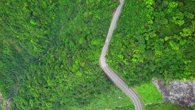 Automobile che si muove lungo la strada Serpentinous curva fra l'ubriacone verde Forest Trees in Taiwan Vista superiore aerea video d archivio