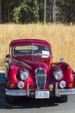 Automobile classica d'annata esotica su esposizione Fotografie Stock