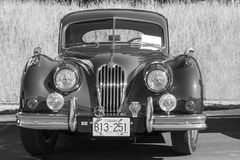 Automobile classica d'annata esotica su esposizione Fotografia Stock Libera da Diritti