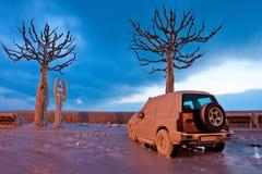 Automobile congelata Fotografia Stock