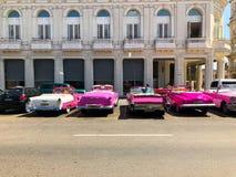 Automobile d'annata cubana classica di rosa Automobile classica americana sulla strada a Avana, Cuba immagini stock libere da diritti