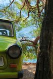 Automobile d'annata sotto l'albero sempreverde Fotografie Stock Libere da Diritti