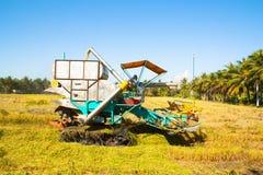 Automobile del raccolto nel giacimento del riso Fotografie Stock