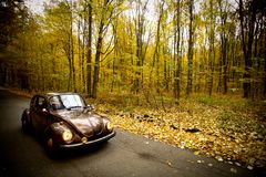 Automobile dell'annata di autunno Fotografia Stock