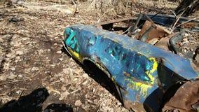 Automobile della foresta del residuo Immagine Stock