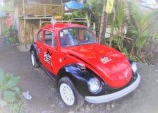 Automobile dello scarabeo fotografia stock libera da diritti
