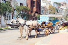 Automobile di cavallo Immagini Stock Libere da Diritti