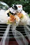 Automobile di cerimonia nuziale con l'orso Fotografie Stock Libere da Diritti