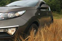 Automobile di estate del giacimento di grano Fotografia Stock