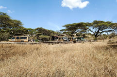 Automobile di safari con i turisti Immagine Stock Libera da Diritti