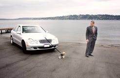 Automobile e cane di lusso dell'uomo di affari nel lago Immagine Stock Libera da Diritti