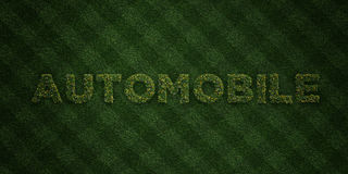 AUTOMOBILE - fresh Grass letters with flowers and dandelions - 3D rendered royalty free stock image Stock Photos