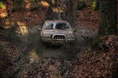 Automobile fuori strada sporca con la foresta di caduta su fondo Fotografia Stock Libera da Diritti