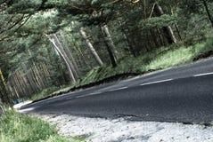 Automobile nella foresta Immagini Stock