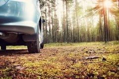 Automobile nella foresta Fotografie Stock