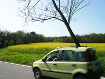 Automobile with a rapeseed field used to produce biodiesel stock photography