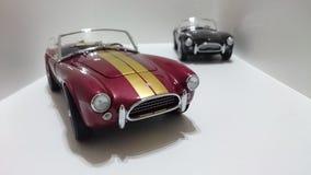 Automobile scoperta a due posti di cabrio di Shelby Cobra, bande dorate Borgogna contro le automobili nere della pittura Immagine Stock