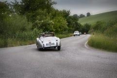 Automobile scoperta a due posti 1951 di JAGUAR XK 120 OTS Immagini Stock