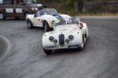 Automobile scoperta a due posti 1953 di JAGUAR XK 120 OTS Immagine Stock Libera da Diritti