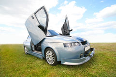 Automobile sportiva nel campo Immagini Stock Libere da Diritti