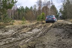 Automobile sulla strada non asfaltata della palude Fuori dal viaggio stradale immagine stock libera da diritti