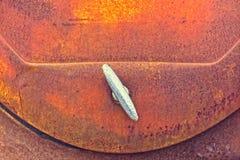 Automobile Trunk Lid Handle Stock Photo