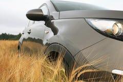 Automobile in un giacimento di grano Immagini Stock