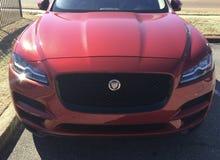 Automobiles britanniques de Jaguar SUV Photographie stock libre de droits