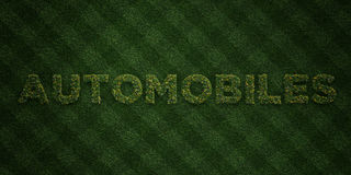 AUTOMOBILES - fresh Grass letters with flowers and dandelions - 3D rendered royalty free stock image. Can be used for online banner ads and direct mailers Stock Photography