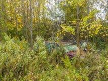 Automobili abbandonate nel legno Fotografie Stock Libere da Diritti