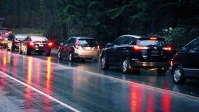 Automobili che passano Forest In The Rain archivi video