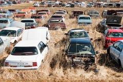 Automobili del Junkyard Fotografia Stock