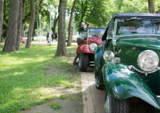 Automobili del Oldtimer in parco Immagine Stock Libera da Diritti