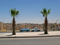 Automobili e palme Fotografie Stock Libere da Diritti