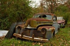 Automobili ed alberi del Junkyard fotografia stock