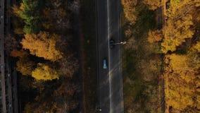 Automobili fra gli alberi di autunno dalla vista di occhio di uccelli una strada di 2 vicoli fra la foresta stock footage