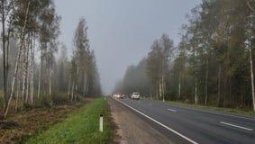 Automobili sulla strada principale in nebbia Immagini Stock