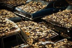 Automobili Undercover Fotografie Stock Libere da Diritti