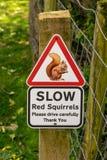 Automobilistes d'avertissement de signe des écureuils rouges photos stock