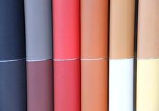 Automobilowi skóra kolory Obraz Royalty Free