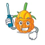 Automotive cloudberry mascot cartoon style. Vector illustration Stock Photo