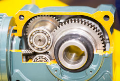 Automotive gear. High precision automotive gear box close-up Royalty Free Stock Photo